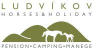 Ludvikov logo